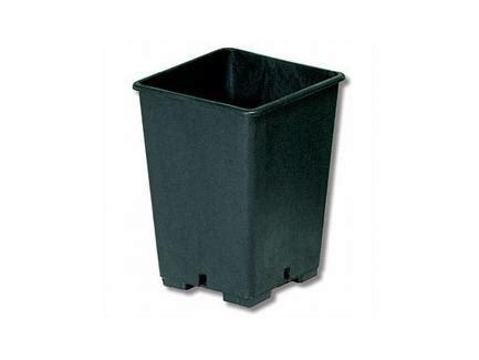 vasi quadrati plastica vasi in plastica quadrati fior di canapa
