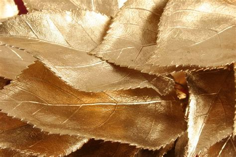 spray paint on leaf 111 best dorado gold images on bronze gold