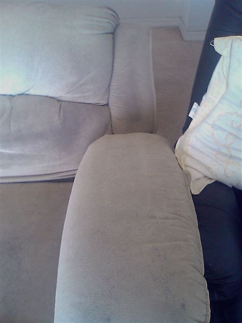 Upholstery In Chicago by Upholstery Cleaning Chicago 847 250 1980