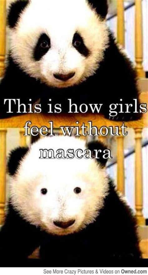 Mascara Meme - 8 pretty and funny makeup memes comediva