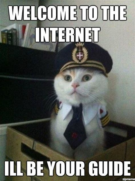 Internet Meme Cat - image welcome to internet cat meme download