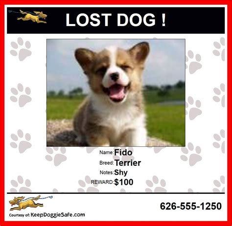 dogs poster lost poster breeds picture