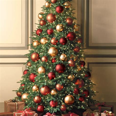 weihnachtsbaum kaufen weihnachtsbaum kaufen die tradition des christbaums