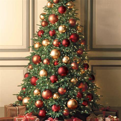 tradition weihnachtsbaum weihnachtsbaum kaufen die tradition des christbaums
