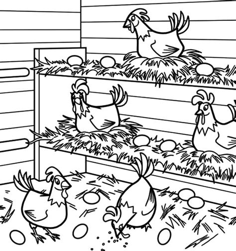 chicken nest coloring page chicken coop coloring pages
