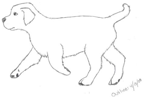 Golden Retriever Sitting Outline by Golden Retriever Coloring Pages