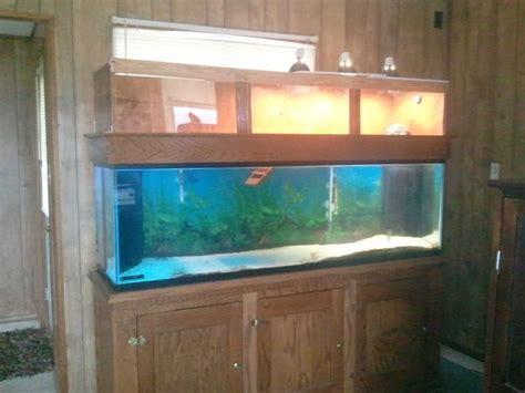 100 gal aquarium second floor turtle tank 120 gallon 120 gallon tank with tator 2017