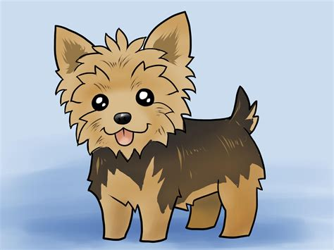 regular yorkie how to draw a yorkie with pictures wikihow