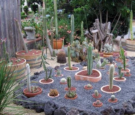 come fare un giardino di piante grasse giardino piante grasse piante grasse piante grasse in