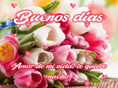 imagenes de buenos dias amor con flores bellas im 225 genes de flores con frases de buenos d 237 as mi amor