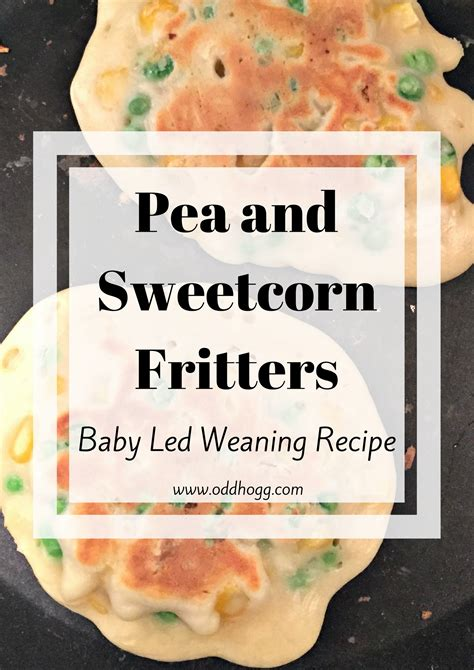 the baby led weaning quick and easy recipe book by gill rapley penguin books australia pea and sweetcorn fritters baby led weaning recipe oddhogg