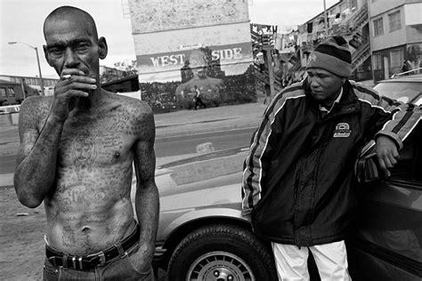 film gangster culte gang culture in cape flats