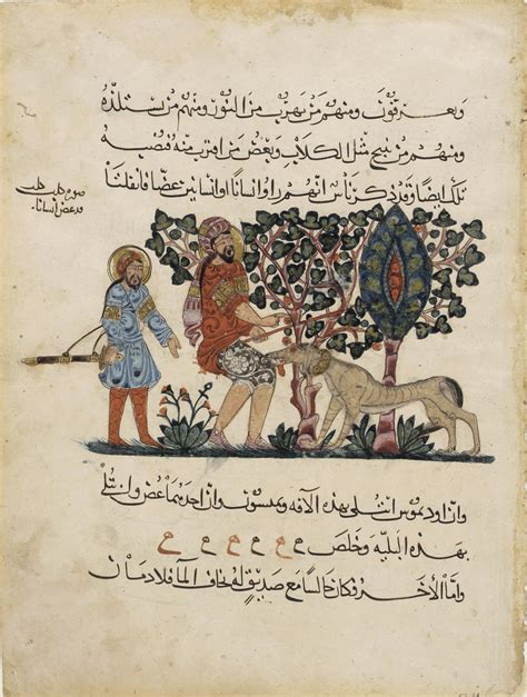 Materia Medika file pedanius dioscorides folio from an arabic translation of the materia medica by