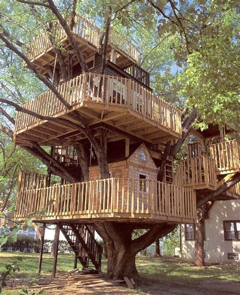 tree house homes tree houses every adult s dream