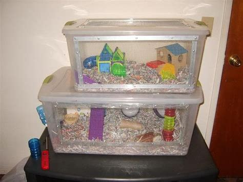 diy bin hamster cage plastic bin hamster cage turtles hermit crabs hamsters i want and
