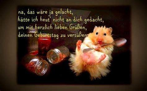 Lied Hoch Sollst Du Leben An Der Decke Kleben by Die Besten 25 Hoch Sollst Du Leben Ideen Auf
