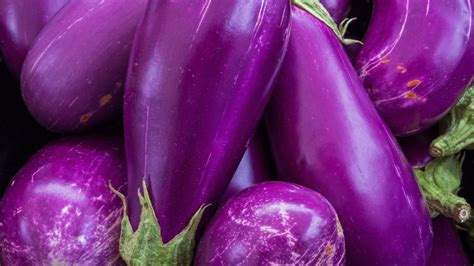 The Purple by Purple Bread Is New Superfood Say Singaporean Scientists