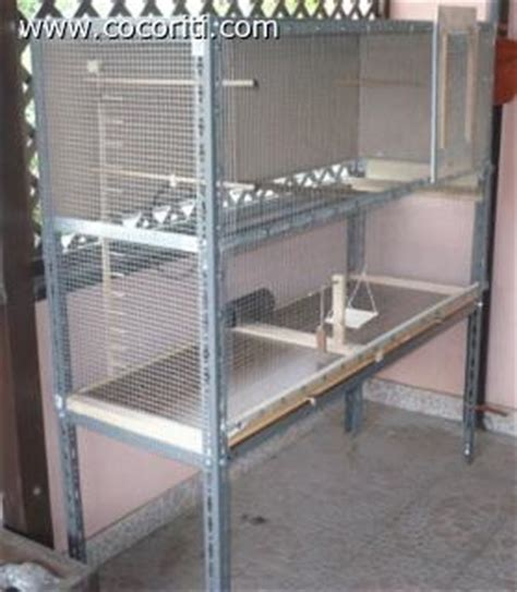 costruire una gabbia realizzare una voliera per i pappagallini