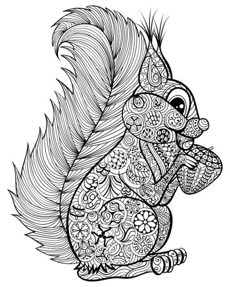 intricate turtle coloring page 2441 best coloriages zentangle doodles images on
