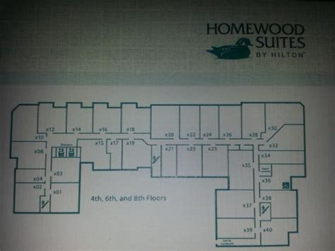 homewood suites floor plans homewood suites room floor plans thefloors co