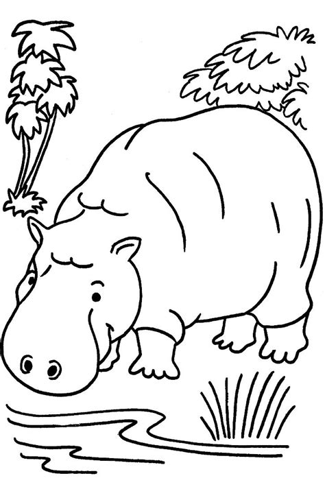 coloring pages for jungle animals 2o awesome jungle coloring pages