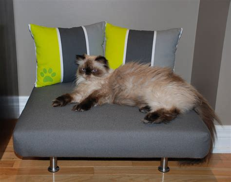 how to remove pet hair from sofa removing pet hair from upholstery furnish burnish