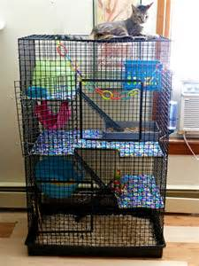 all living things luxury rat pet home cage pic thread no chat page 4