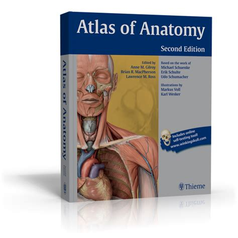anatomy 2nd edition books thieme s atlas of anatomy 2nd edition best books for exams