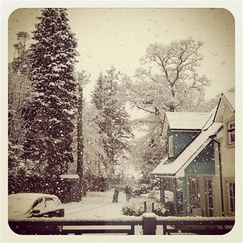clc boats instagram 9 best your holiday pictures with clc world images on