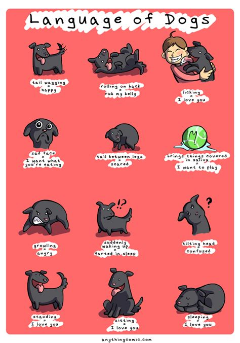 puppy language comics language of dogs anything about nothing
