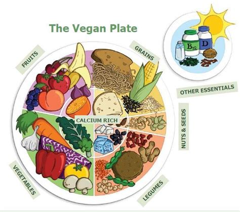for a modern guide to plant based vegan gluten free recipes for busy lives books becomingvegan ca 187 the vegan plate