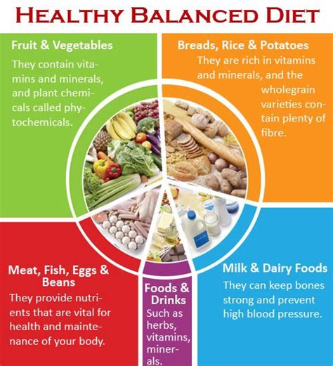 Balanced Food For Healthy Essay by Healthy Balanced Diet Be Sure To Try Shopping For Organic Non Gmo Veggies And Grains And Grass
