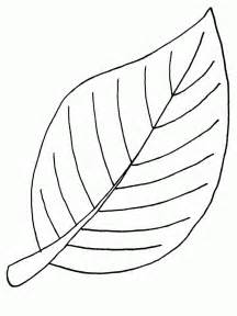 leaf coloring pages leaf coloring pages coloringpages1001
