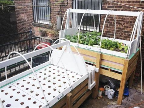 78 images about aquaponics on pinterest aquatic animal