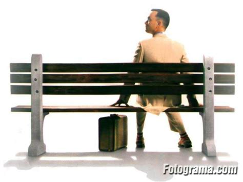 forrest gump park bench ladies and gentlemen of the category of 99 cats and