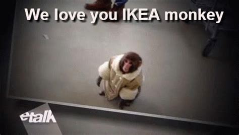 ikea gif the 27 stages of being trapped in ikea