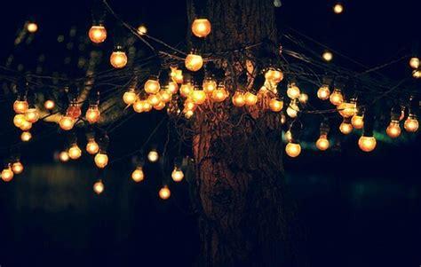 Luzes De Natal Decora 231 227 O Para O Ano Inteiro Bontempo Meaning Tree Lights