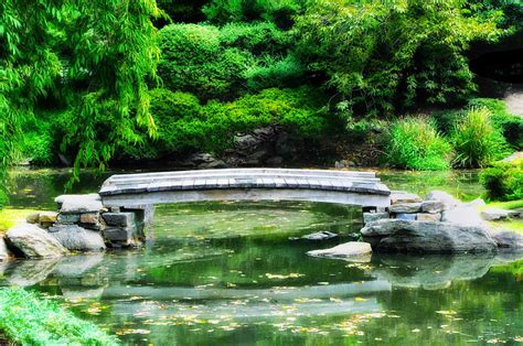 koi pond bridge koi pond bridge japanese garden photograph by bill cannon