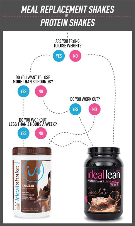 x protein meal shake 1000 ideas about meal replacement protein shakes on