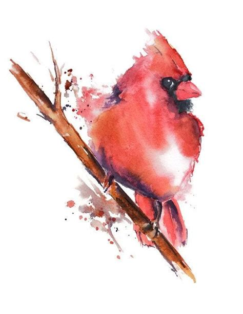 watercolor cardinal tattoo 17 best ideas about cardinal bird tattoos on
