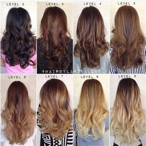level 5 hair color 4 best images of ash brown hair color chart level 5 hair