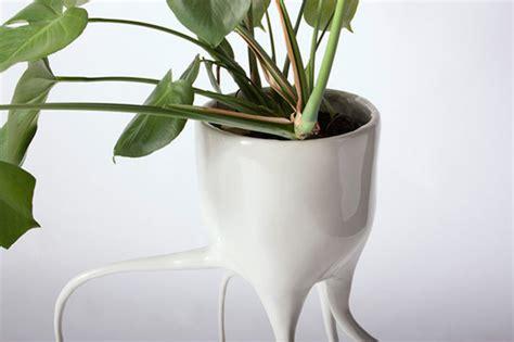 vasi piante design vasi per piante con radici di ceramica create dal designer