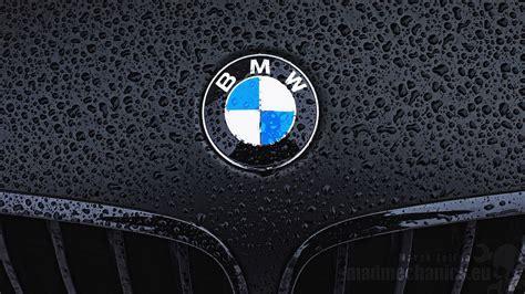 Bmw Logo Bmw Logo Wallpaper