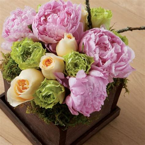 peony floral arrangement peonies cabbage roses awesomeness pinterest