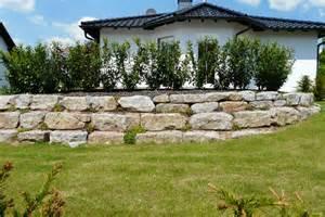 pflanzen für schattige plätze im garten landschaftsbau hoffmann trockenmauern