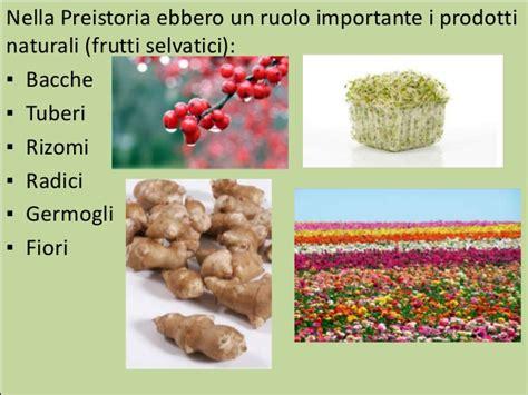 alimentazione nel paleolitico alimentazione romana medievale e preistorica