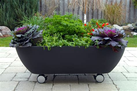 bathtub planters mobile bathtub like planter to organize a mobile garden