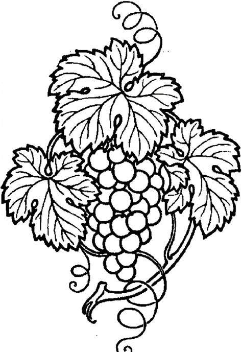 grape leaves coloring page 12 best images about art on pinterest dog paw prints