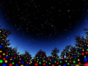 christmas trees in starry sky