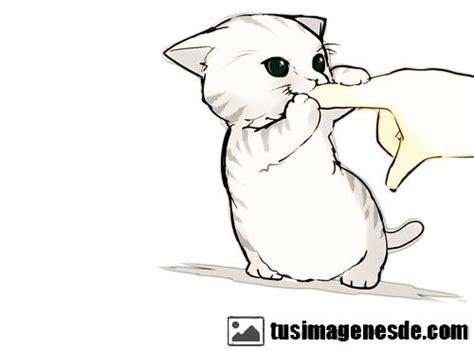 imagenes de gatitos kawaii para colorear im 225 genes de gatitos kawaii im 225 genes